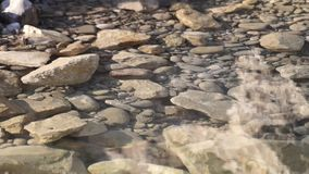 Close up of a little river. Close up of a transparent water surface stock video footage