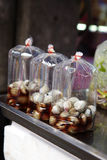 Close up little shell Stock Photos