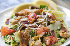 Close up of a lobster Caesar salad Royalty Free Stock Photo