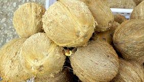 Close up local Coconuts Stock Photo