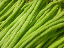 Close Up Long Bean. From Market Stall Stock Photo