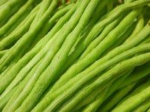 Close Up Long Bean Stock Photo