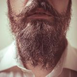 Close up of long beard and mustache Royalty Free Stock Images