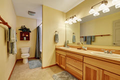 Close up of long double sink bathroom vanity Royalty Free Stock Photo