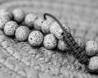 Close-up Lotus Seeds stock afbeelding