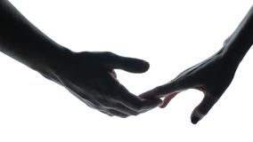The couple takes hands on white background