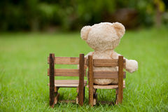 Close up lovely teddy bear sit on wooden chair, Concept about lo. Neliness or waiting for someone, Natural background Stock Image