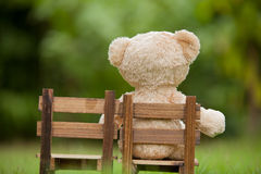 Close up lovely teddy bear sit on wooden chair, Concept about lo Royalty Free Stock Images