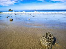 Close up Lugworm casts with idyllic ocean and endless horizon on the beach stock photo