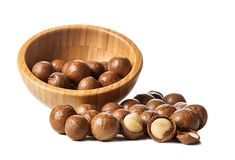 Close up of Macadamia Nuts isolated on white background.  stock image