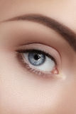 Close-up macro of beautiful female eye. Clean skin, fashion naturel make-up Stock Image