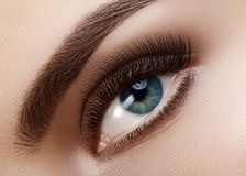 Close-up macro beautiful female eye with perfect shape eyebrows. Clean skin, fashion natural smoky make-up. Good vision Stock Photos