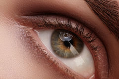 Close-up macro beautiful female eye with perfect shape eyebrows. Clean skin, fashion natural smoky make-up. Good vision Royalty Free Stock Images