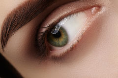 Close-up macro beautiful female eye with perfect shape eyebrows. Clean skin, fashion natural smoky make-up. Good vision Stock Images