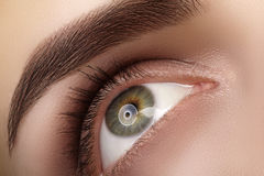 Close-up macro beautiful female eye with perfect shape eyebrows. Clean skin, fashion natural smoky make-up. Good vision Stock Photo