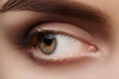 Close-up macro beautiful female eye with perfect shape eyebrows. Clean skin, fashion natural smoky make-up. Good vision Royalty Free Stock Photography