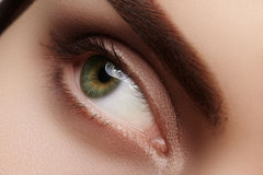 Close-up macro beautiful female eye with perfect shape eyebrows. Clean skin, fashion natural smoky make-up. Good vision Royalty Free Stock Photos