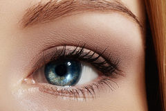 Close-up macro of beautiful female eye with perfect shape eyebrows. Clean skin, fashion naturel make-up. Good vision Stock Images