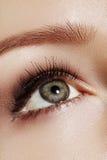 Close-up macro of beautiful female eye with perfect shape eyebrows. Clean skin, fashion naturel make-up. Good vision Royalty Free Stock Photo