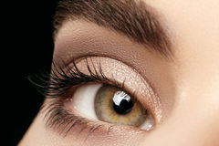 Close-up macro of beautiful female eye with perfect shape eyebrows. Clean skin, fashion naturel make-up. Good vision Royalty Free Stock Images