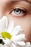 Close-up macro of beautiful female eye with perfect shape eyebrows. Clean skin, fashion naturel make-up Stock Photo