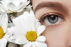 Close-up macro of beautiful female eye with perfect shape eyebrows. Clean skin, fashion naturel make-up Royalty Free Stock Photos