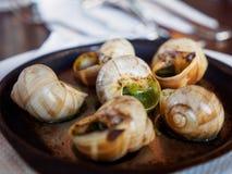 Close up macro de caracóis do escargot no café francês, Paris, França foto de stock royalty free