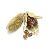 Close up macro de um cardamomo verde orgânico completo e rachado Fotografia de Stock Royalty Free