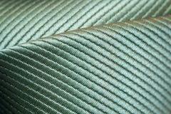 Close-up macro de um laço do pescoço imagem de stock royalty free
