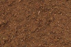 Close up macro do relvado da turfa, grande teste padrão orgânico marrom detalhado do fundo da textura do solo do húmus, espaço te Fotografia de Stock Royalty Free