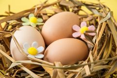 Close up. Easter celebration. Brown eggs in a nest of straw. The decor of the felt flowers of pastel colors. Yellow background. Close up, macro. Easter royalty free stock photography