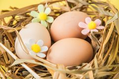 Close up, macro. Easter. Brown eggs in a nest of straw. The decor of the felt flowers of pastel colors. Yellow background. Close up, macro. Easter still life stock photo