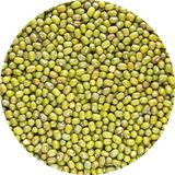 Close up Macro of Heap of Whole green Pulse held in circular window isolated against white background. Agriculture product concept royalty free stock image