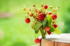 Close up, macro. Juicy bouquet Of Wild Strawberries on green background. Copy space