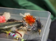 Close up macro of plastic box with colorful fishing flies lure baits, bee, fly and wobler for angling fly-fishing gear. Selective focus Stock Photos