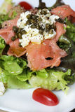 Close up macro raw salmon salad Stock Images