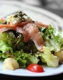 Close up macro raw salmon salad Royalty Free Stock Photo