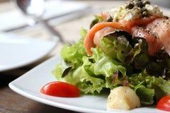 Close up macro raw salmon salad Stock Photography