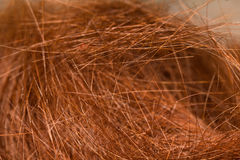Close up macro red hairs leavings on floor in beauty shop. Royalty Free Stock Photography