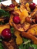 Close up macro shot of baked dish - sweet potato salad with nuts Royalty Free Stock Photography
