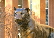 Tiger Statue at The University of Tennessee Stock Photo