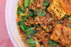 Close up of Malay style curry Stock Photography