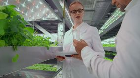Close-up of a male biologist carrying a test tube with plant samples for discussion with colleagues.  stock video footage