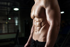 Close up of male body or bare torso in gym. Sport, bodybuilding, fitness and people concept - close up of male body or bare torso in gym Stock Image