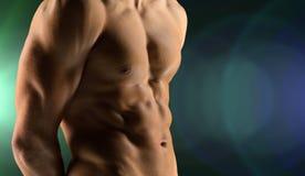 Close up of male bodybuilder bare torso Stock Image
