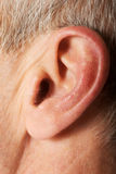 Close up on male ear Royalty Free Stock Images