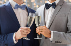 Close up of male gay couple with champagne glasses Royalty Free Stock Photography