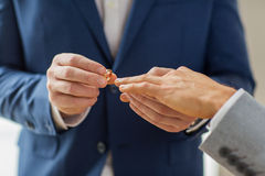 Close up of male gay couple hands and wedding ring Stock Photography