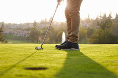 Close Up Of Male Golfer Lining Up Putt On Green Royalty Free Stock Photo