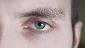 Close up of a male gray eye. A tired freelancer blinks, the pupil expands and contracts.